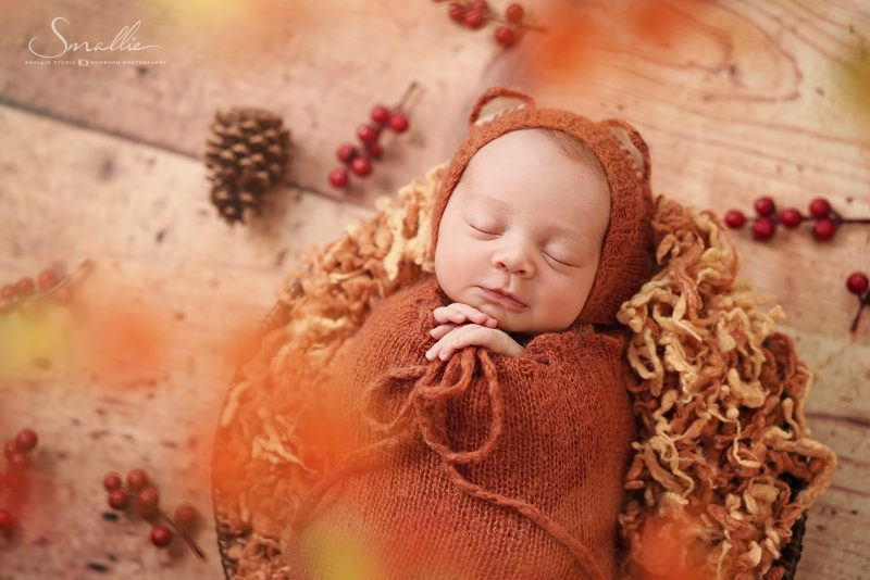 newborn photography autumn leaves