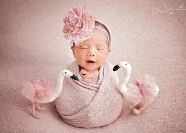 pink classy newborn