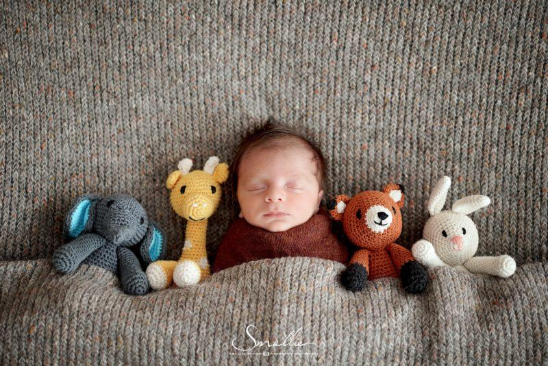 at home newborn Orange Grey theme